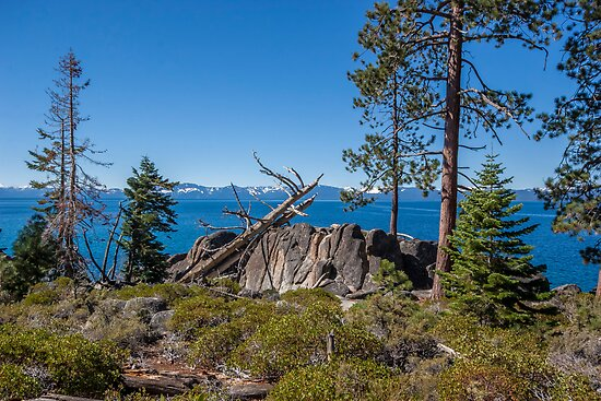 East Shore Lake Tahoe III by Richard Thelen