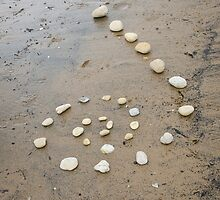 Beach Spiral by Sarah Horsman