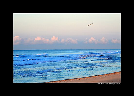 Seagulls Flying Over Atlantic Ocean In The Morning - Smith Point, New York by © Sophie W. Smith