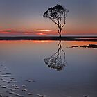 Beachmere Beauty - Qld Australia by Beth  Wode