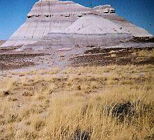 Painted Desert #5, November 2012 by jenjohnson1968
