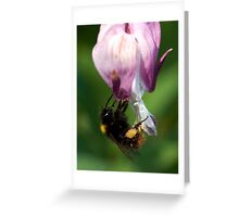 Busy Bee! Greeting Card