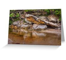 Reflections of nature Greeting Card