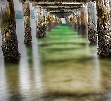 Under the boardwalk by Christina Brunton