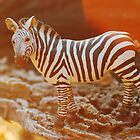 Zebra at sunrise by Talida Pacurar