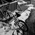 Wintry Bike Rack by Nevermind the Camera Photography