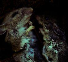 little sleepers by deaddog