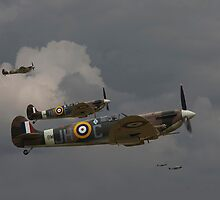 317 'Polish' Squadron Spitfires by Pat Speirs