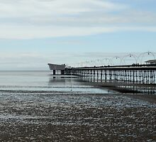 The Pier by Nick Coates