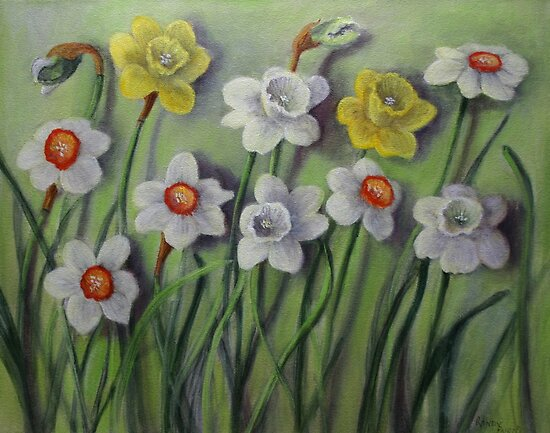 Daffodils Swaying by Randy  Burns