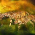 Cheetah World by Carol  Cavalaris