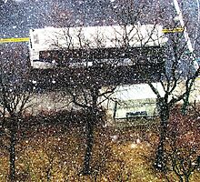 Snow in the big city  by Alberto  DeJesus