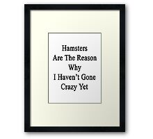Hamsters Are The Reason Why I Haven't Gone Crazy Yet Framed Print