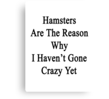 Hamsters Are The Reason Why I Haven't Gone Crazy Yet Canvas Print