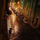 A rainy night in Prague by Robert Larson