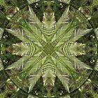Forest Fern Mandala by haymelter