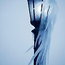 Windblown Icicles by Laurie Minor