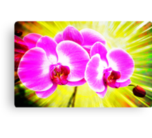 Bloomin Canvas Print