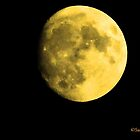 Gold Moon by xcaad