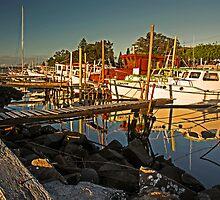 Fishing Fleet Greet Sunset by bazcelt