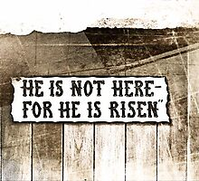 He is risen by Jeff  Wilson