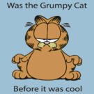 Garfield Grumpy Cat by TOH5
