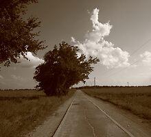 Oklahoma Route 66, 2008, Sepia by Frank Romeo