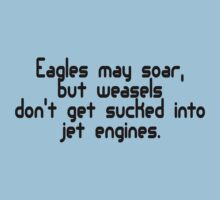 Eagles may soar, but weasels don't get sucked into jet engines by SlubberBub