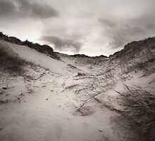 Sand Dune by joannegrist89
