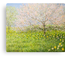 Springtime impression Canvas Print