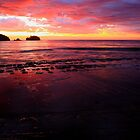tessellated sunrise, eaglehawk neck. tasmania. by tim buckley | bodhiimages photography