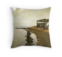 Calm at the waters edge Throw Pillow