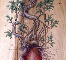 Bonsai Heart (ficus) by Fay Helfer