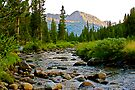 High Sierra Creek by John Butler