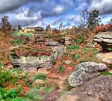 Brimham Rocks North Yorkshire - HDR by Colin J Williams Photography