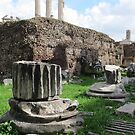 Roman Forum, Rome, Italy. by Christopher Clark