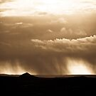 New Mexico Rain by Derrick Birdsall