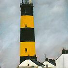 St. John's Point Lighthouse by Les Sharpe