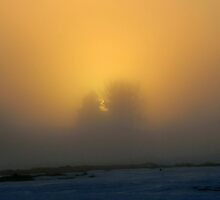 Fog Bound Sunset III by Kathleen M. Daley