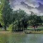 The local lake by gazzman1