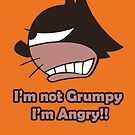 Angry Grumpy  Cat by jpmdesign