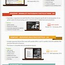 Most Popular WordPress Premium Themes (infographic) by Healthcenter