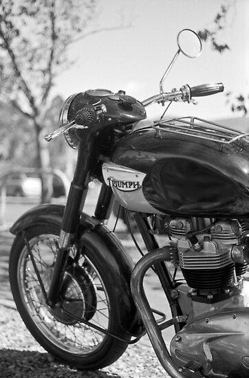 Triumph 650 by Brett Rogers