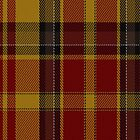 01111 Aboyne Fashion Tartan Fabric Print Iphone Case by Detnecs2013