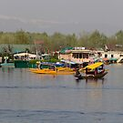 Shikaras and houseboats along with a garden in the Dal Lake in Srinagar by ashishagarwal74