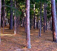 Abstract Pine Tree Forest by perkinsdesigns