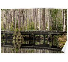 Okefenokee Swamp Poster