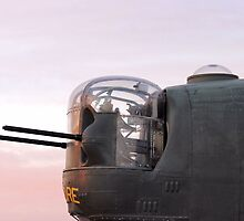 Consolidated B-24 Liberator by aprilann