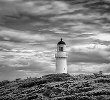 Lighthouse - Cape Schank by Richard  Cubitt
