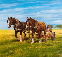 Afternoon ploughing by barryjdavisart